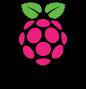 Logo Raspberry-Pi