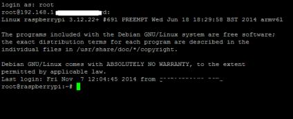 Prompt Raspberry